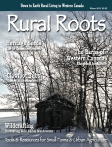 Rural Roots Winter 2013