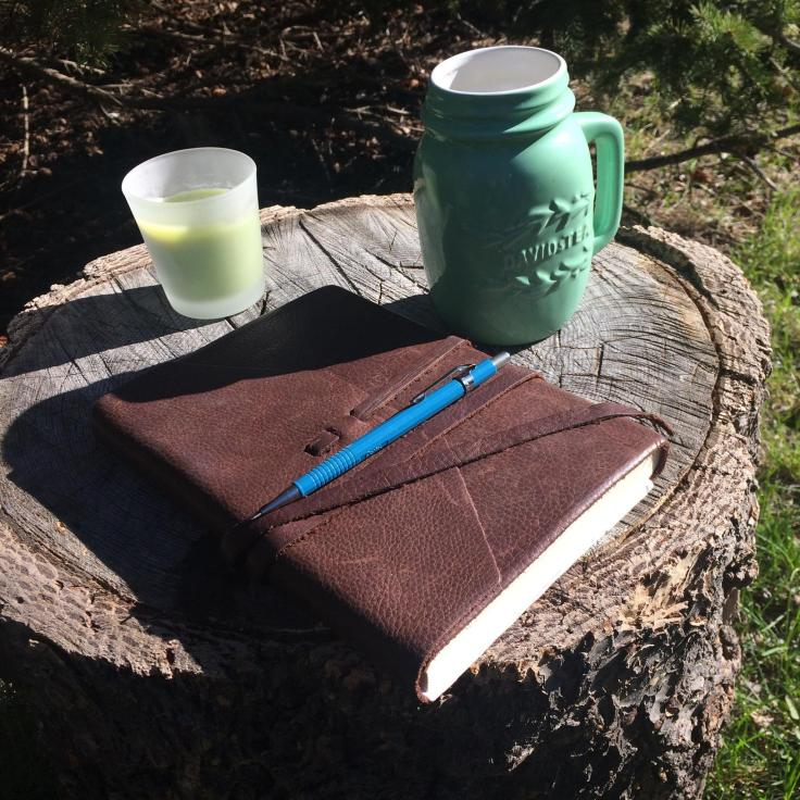 Journal Woodpile