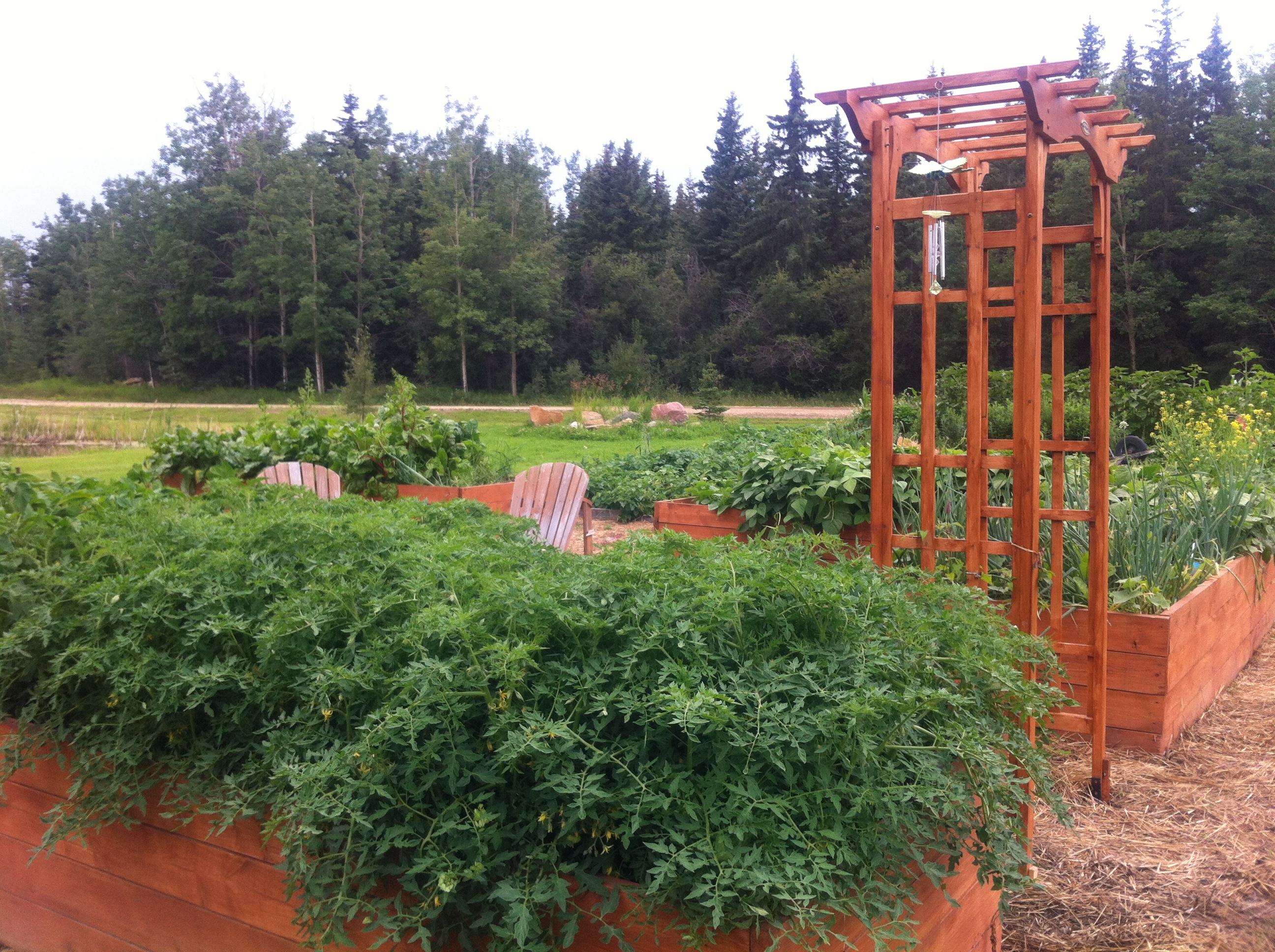 Heritage Farm Raised Beds 1