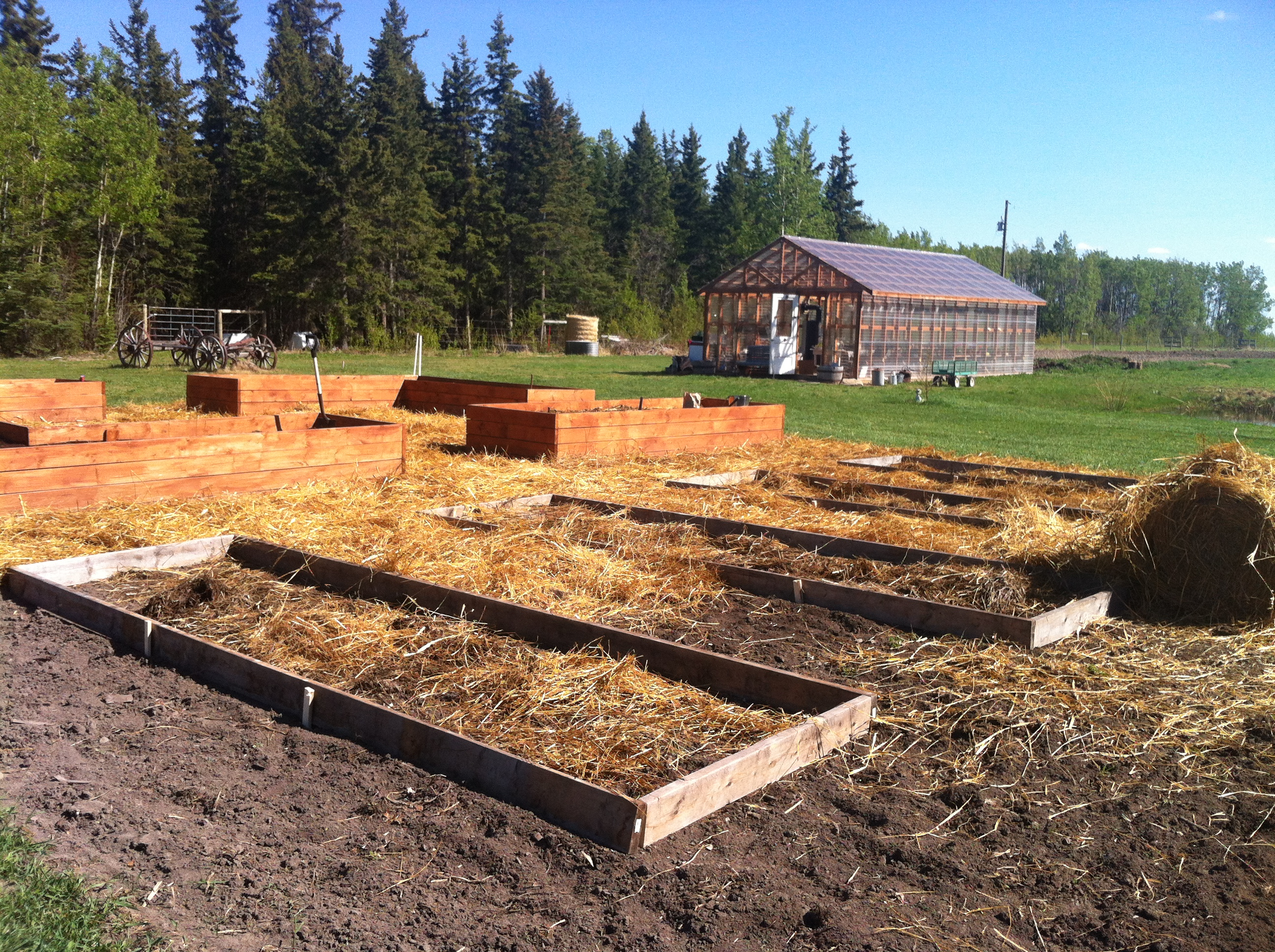 Heritage Farm Raised beds 5